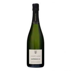 "Champagne Agrapart & Fils ""Experience 07"""