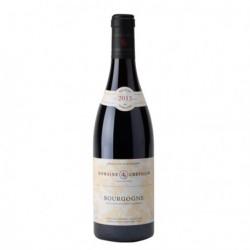 """Domaine Robert Chevillon """"Bourgogne Pinot Noir"""" 2013"""