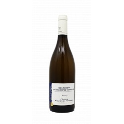 Domaine Sébastien Magnien - Bourgogne Hautes Côtes de Beaune blanc 2017
