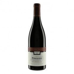Domaine Thierry Violot-Guillemard Pommard \