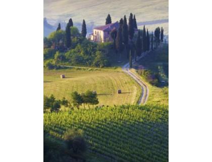 Toscane IGT